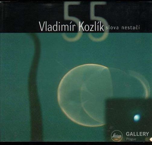 Vladimír Kozlík